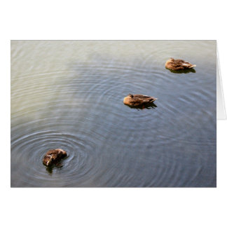 ducks in a pond card