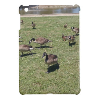 Ducks In Nature iPad Mini Case