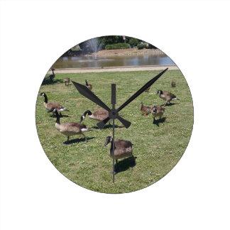 Ducks In Nature Round Wall Clock