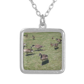 Ducks In Nature Silver Plated Necklace
