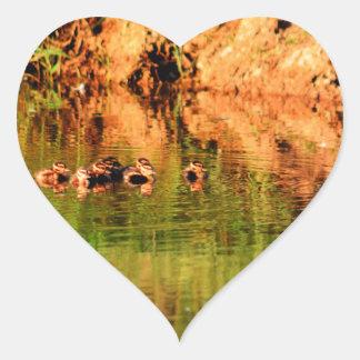 DUCKS IN WATER QUEENSLAND AUSTRALIA HEART STICKER