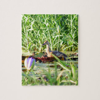 DUCKS IN WATER QUEENSLAND AUSTRALIA JIGSAW PUZZLE