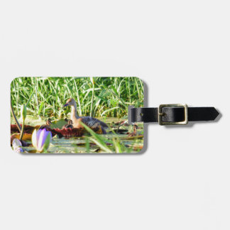 DUCKS IN WATER QUEENSLAND AUSTRALIA LUGGAGE TAG