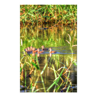 DUCKS IN WTAER AUSTRALIA ART EFFECTS STATIONERY