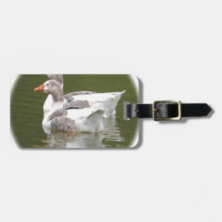 ducks luggage tag