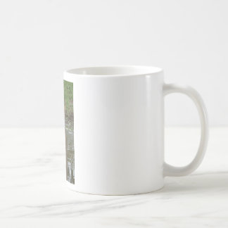 DUCKS NEAR WATER IN RURAL AUSTRALIA COFFEE MUG