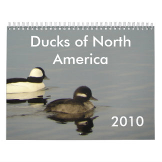 Ducks of North America 2010 Calendars