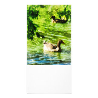 Ducks on a Tranquil Pond Photo Card Template