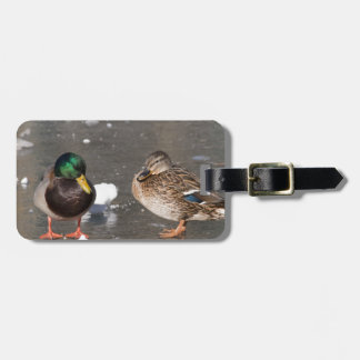 """ducks on black ice"" luggage tag"