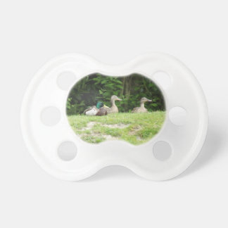 Ducks Pacifier
