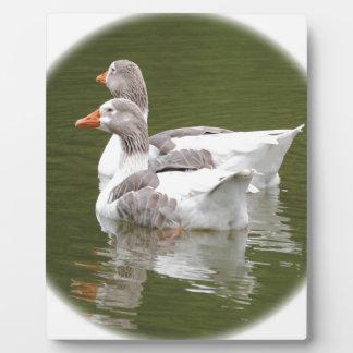ducks plaque