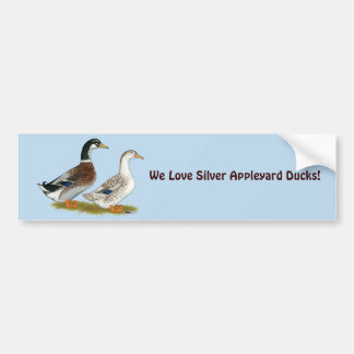 Ducks:  Silver Appleyard Bumper Sticker