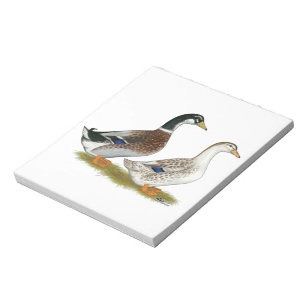 Ducks:  Silver Appleyard Notepad