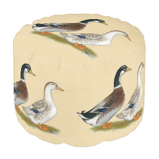 Ducks:  Silver Appleyard Pouf