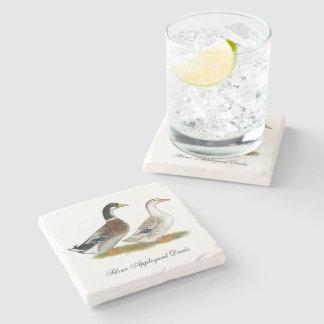 Ducks:  Silver Appleyard Stone Coaster