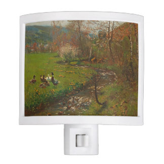 Ducks Stream Birds Meadow Animals Night Light