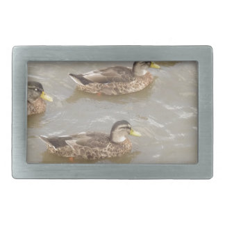 Ducks swimming belt buckles