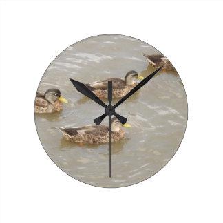 Ducks swimming wall clocks