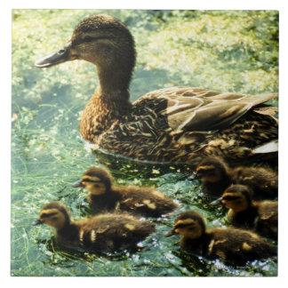 ducks tile