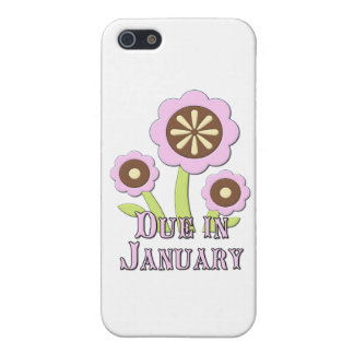 Due in January Expectant Mother Covers For iPhone 5