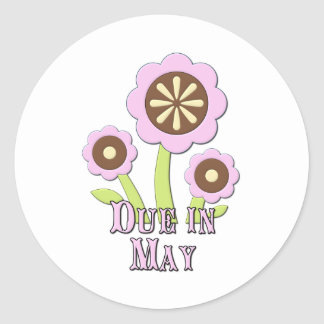 Due in May Expectant Mother Classic Round Sticker