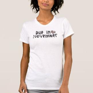 Due in November. Tee Shirt