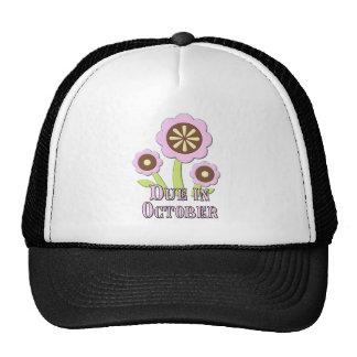 Due in October Expectant Mother Trucker Hat
