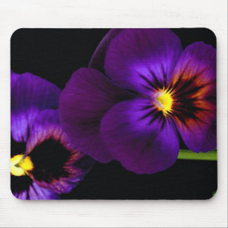 Duet of purple pansies, Washington State Mouse Pad