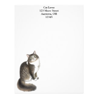 Duffy the Maine Coon Cat Letterhead