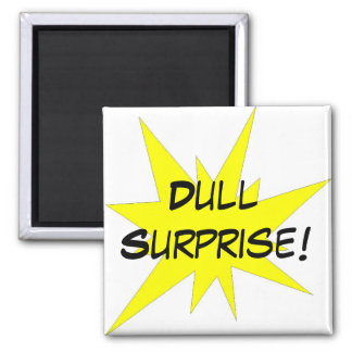 Dull Surprise! Magnet
