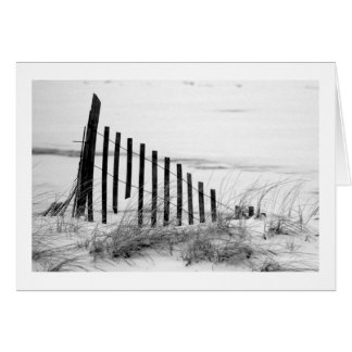 Dune Fence in Snow Card