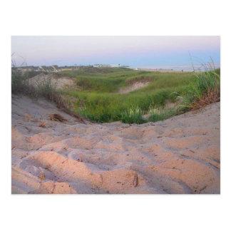 Dunes in Montauk Postcard