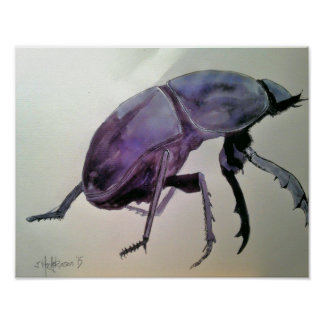 """Dung Beetle"" Poster"