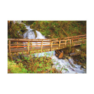 Dupont Trail in Juneau Alaska Canvas Print