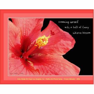 Durable Acrylic Hibiscus Blossom haiku art magnet Photo Sculpture Magnet