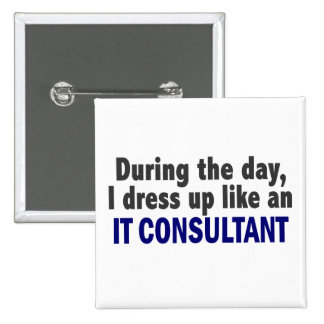 During The Day I Dress Up Like An IT Consultant Pins