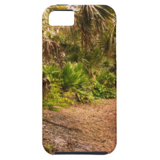 Dusk in Florida Hardwood Hammock iPhone 5 Covers