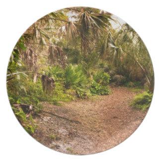 Dusk in Florida Hardwood Hammock Plate