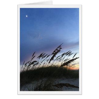 Dusk on the beach. card
