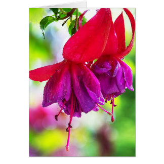 Dusky Rose Fuschia Card