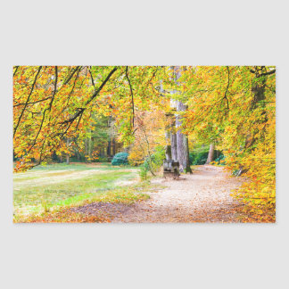 Dutch autumn landscape with footpath and tree