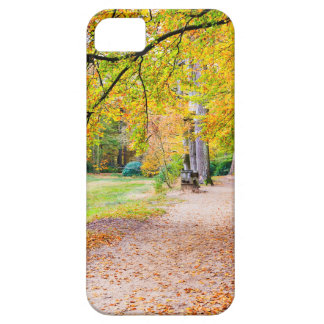Dutch autumn landscape with footpath and tree iPhone 5 covers