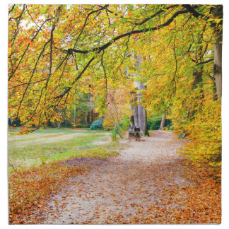 Dutch autumn landscape with footpath and tree napkin