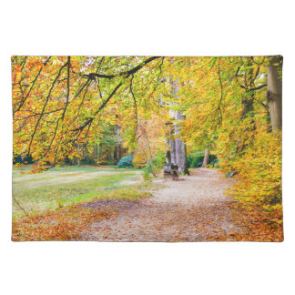Dutch autumn landscape with footpath and tree placemat