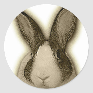 Dutch bunny sticker