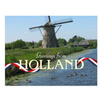 Dutch Windmill Ducks Postcard