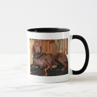 Dutchess - Chocolate Labrador - Photo-13 Mug