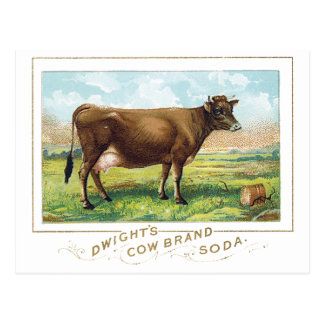 Dwight's Cow Brand Soda Postcard