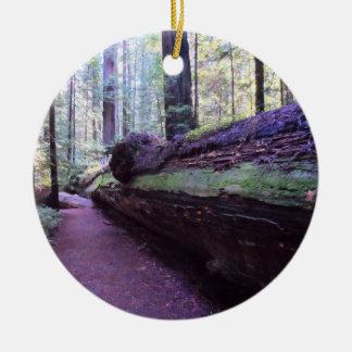 Dyerville Giant- Humboldt Redwoods State Park Round Ceramic Ornament