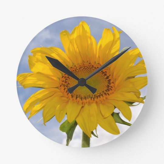 Dynamic Sunflower Clock